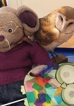 Craft and Play with Albany Mouse catchup
