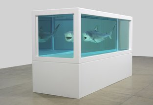 Installation by Damien Hirst