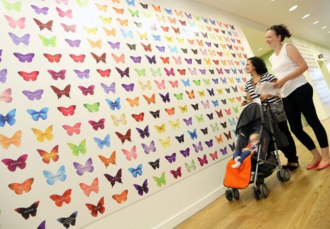 Donate to the Great North Museum: Hancock and add your butterfly to our wall