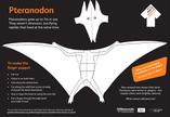 GNM Pteranodon puppet