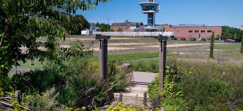 Segedunum fort from herb garden