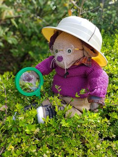 Great North Museum mascot Albany holds a magnifying glass