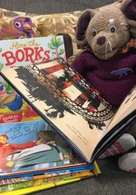 *FULLY BOOKED* October Half Term - Marine Day - Museum Storytime