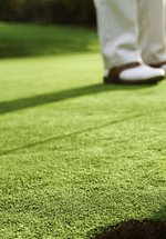 Family Challenge: Crazy Golf