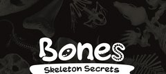 Bones exhibition logo
