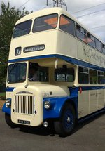 SOLD OUT Vintage buses on the Plaza