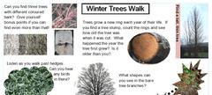GNM Tree Walk trail