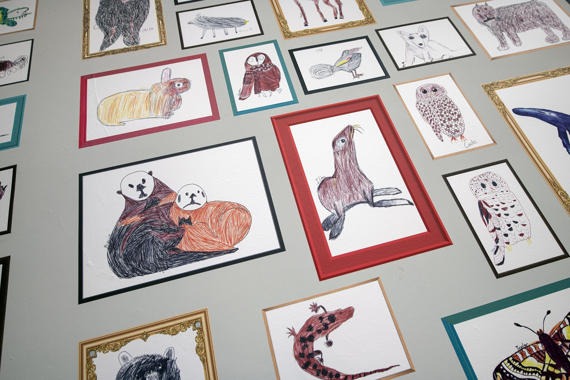 Various children's biro drawings of animals shown in frames.