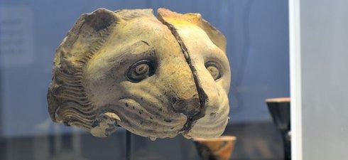Lion head spout