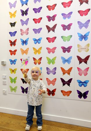 The Butterfly Wall at the Great North Museum