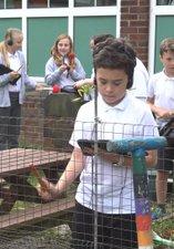 Cragside primary school