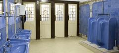 Art Deco toilets - blue tiling